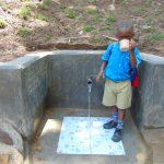 The Water Project: Emukangu Community, Okhaso Spring -  Slurp