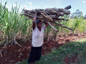 The Water Project:  Carrying Firewood