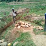 The Water Project: Shihingo Community, Inzuka Spring -  Drainage Channels At Spring