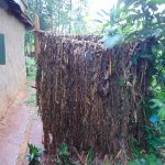 The Water Project: Emurumba Community, Makokha Spring -  Bathroom Of Banana Leaves