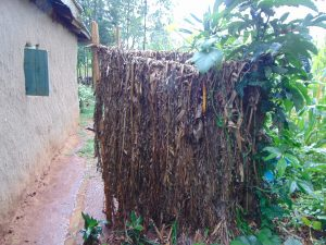 The Water Project:  Bathroom Of Banana Leaves