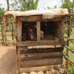 The Water Project: Shihingo Community, Inzuka Spring -  Chicken Coop