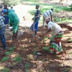 The Water Project: Buhayi Community, Nasichundukha Spring -  Community Members Planting Grass And Building The Fence