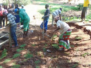 The Water Project:  Community Members Planting Grass And Building The Fence