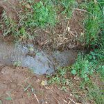 The Water Project: Namarambi Community, Iddi Spring -  Drainage Channel At The Spring