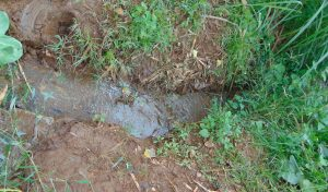 The Water Project:  Drainage Channel At The Spring