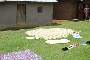 The Water Project:  Maize Being Aired To Dry