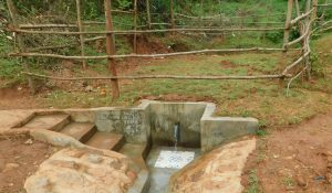 The Water Project:  Kenya Spring Complete
