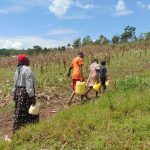 The Water Project: Bukhaywa Community, Shidero Spring -  Carrying Water Home Through A Farm