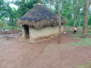 The Water Project:  Traditional Grass Thatched House