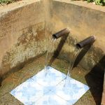 The Water Project: Jivovoli Community, Wamunala Spring -  Wamunala Spring
