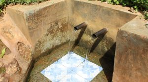 The Water Project:  Wamunala Spring