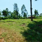 The Water Project: Ewamakhumbi Community, Mukungu Spring -  Living Compound