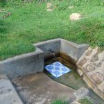 The Water Project: Ejinja Community, Anekha Spring -  Anekha Spring Green With Grass