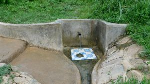 The Water Project:  Aduda Spring Green With Grass