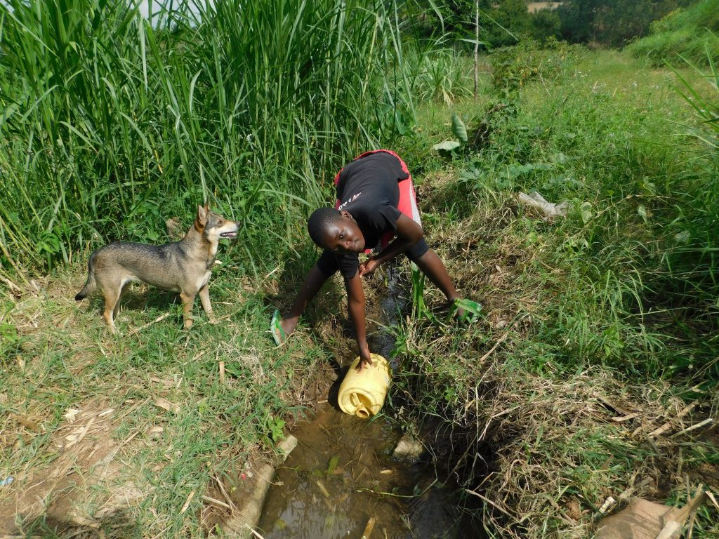 The Water Project : 4-kenya19154-fetching-water-in-the-stream