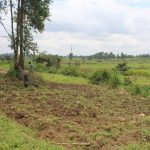 The Water Project: Kalenda B Community, Lumbasi Spring -  Farm Lands