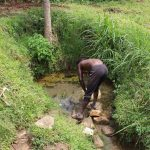 The Water Project: Kalenda B Community, Lumbasi Spring -  Fetching Water At The Spring