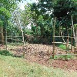 The Water Project: Munenga Community, Francis Were Spring -  Cow Pen