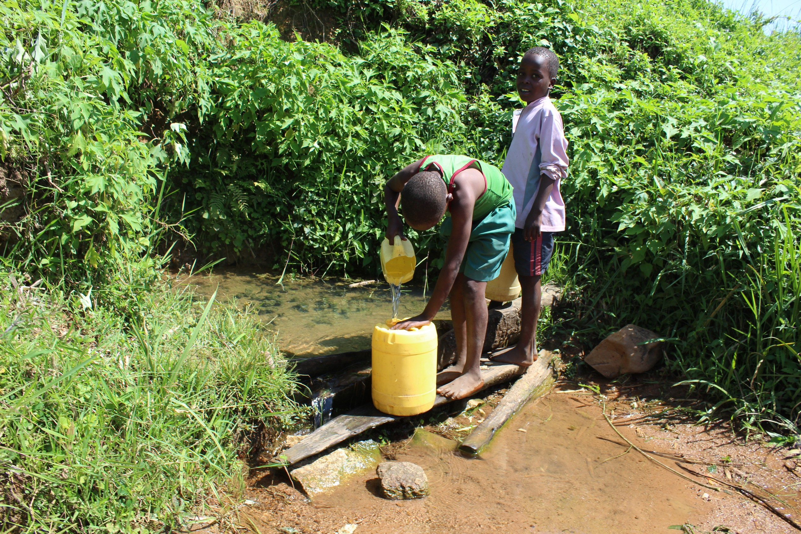 The Water Project : kenya19127-fetching-water-at-the-spring