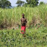 The Water Project: Kalenda A Community, Webo Simali Spring -  Woman Stands In Her Sugarcane Field