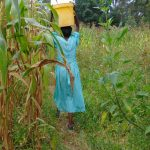 The Water Project: Mubinga Community, Mulutondo Spring -  Walking Through Fields With Water
