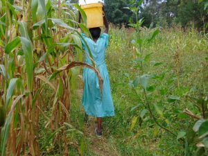 The Water Project:  Walking Through Fields With Water