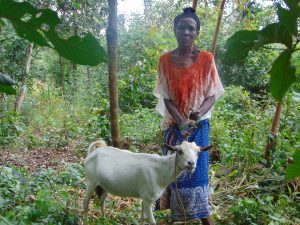 The Water Project:  Woman And Goat