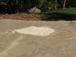 The Water Project:  Maize Drying