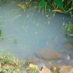 The Water Project: Maondo Community, Ambundo Spring -  Spring Water