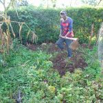 The Water Project: Rosterman Community, Lishenga Spring -  Preparing Farm For Planting
