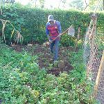 The Water Project: Rosterman Community, Lishenga Spring -  Working Farm