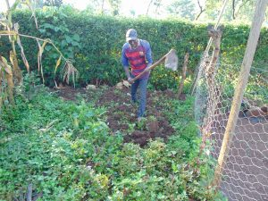 The Water Project:  Working Farm