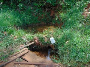 The Water Project:  Magumba Spring