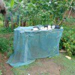 The Water Project: Buyangu Community, Mukhola Spring -  Dish Drying Rack