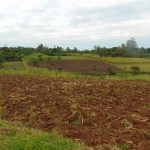 The Water Project: Buyangu Community, Mukhola Spring -  Farm