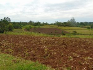 The Water Project:  Farm