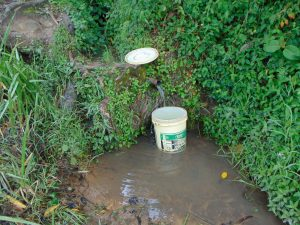 The Water Project:  Mukhola Spring