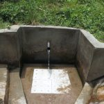 The Water Project: Emasera Community, Visenda Spring -  Visenda Spring Green With Grass