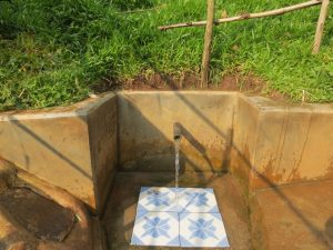 The Water Project:  Chisembe Spring Green With Grass