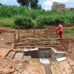 The Water Project: Lutonyi Community, Lutomia Spring -  Fencing Around Planted Grass
