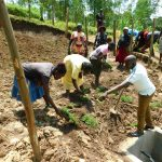 The Water Project: Ikonyero Community, Amkongo Spring -  Community Members Planting Grass