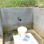 The Water Project: Emachembe Community, Mukabane Spring -  Mukabane Spring Green With Grass