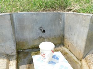 The Water Project:  Mukabane Spring Green With Grass
