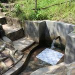 The Water Project: Ewamakhumbi Community, Yanga Spring -  Yanga Spring Green With Grass