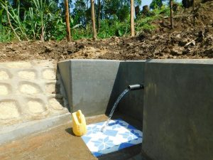 The Water Project:  Clean Water Flows From Newly Completed Amkongo Spring