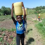 The Water Project: Luyeshe Community, Matolo Spring -  Carrying Spring Water Home