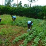 The Water Project: Kerongo Secondary School -  Students On The School Farm