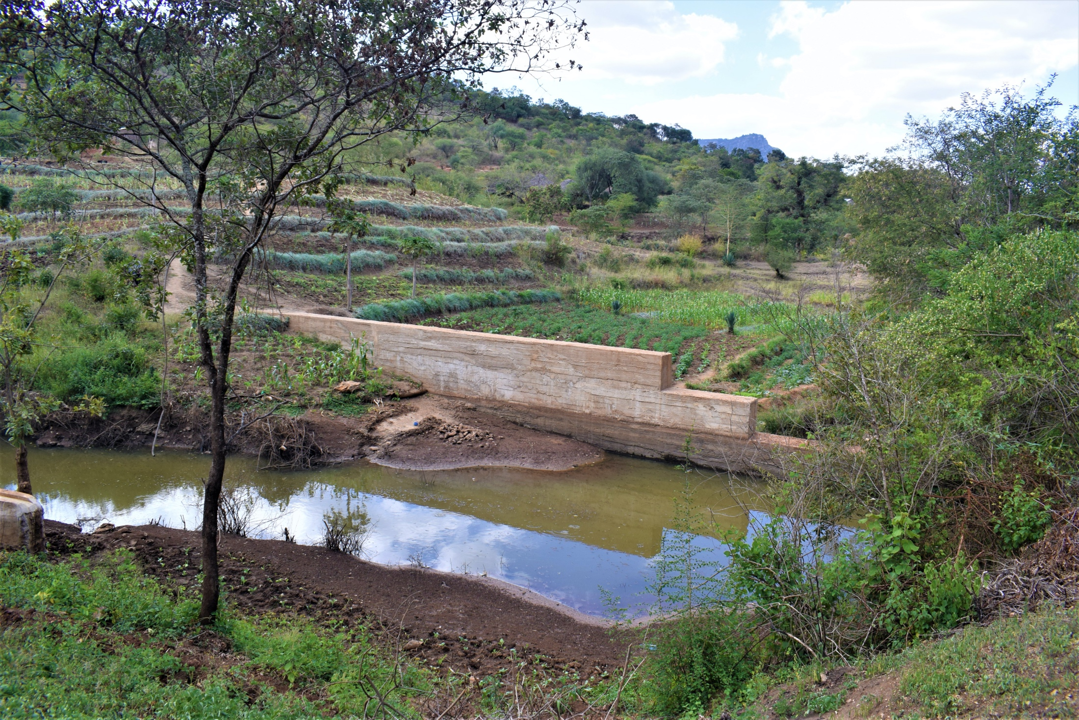 The Water Project : kenya18192-dam-and-farmlands-a-year-later