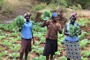 Giving Update: Kithumba Community Sand Dam